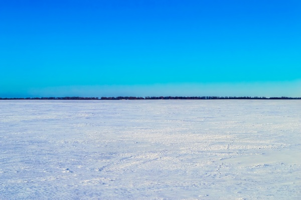 white snow covered field in winter