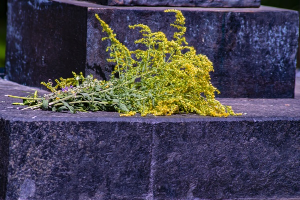 yellow flowers lie on the grave