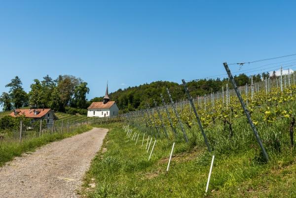 small chapel in vineyard st