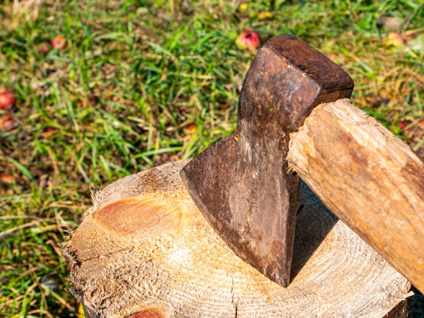 chopping wood with an iron ax