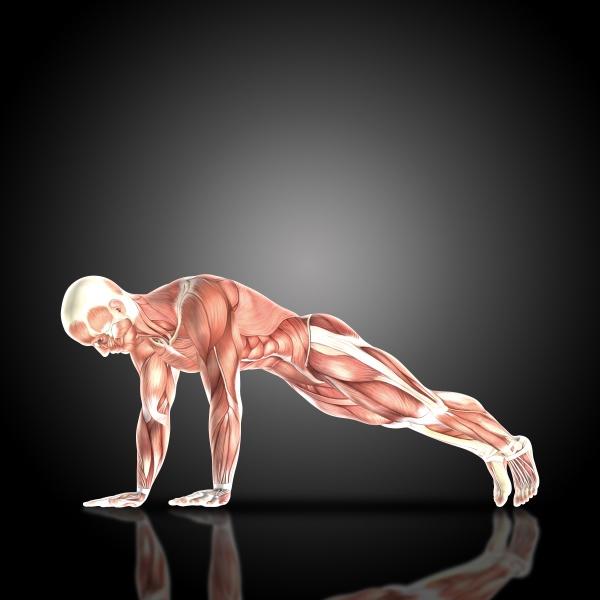 3d render of a medical figure