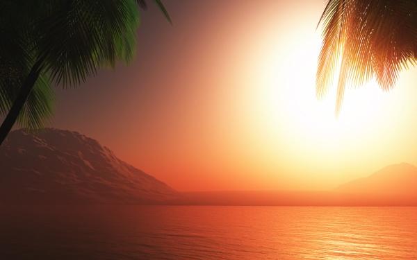 3d palm tree sunset ocean