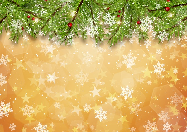 christmas tree branches on gold star