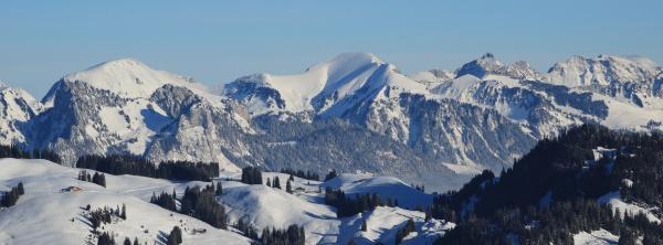 wintery landscape seen from horneggli switzerland