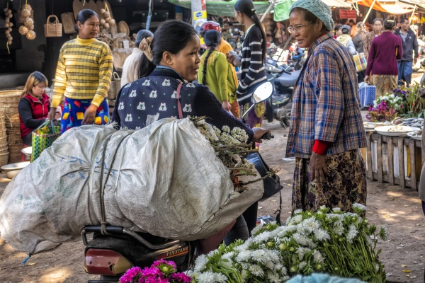 fresh food and flower market in
