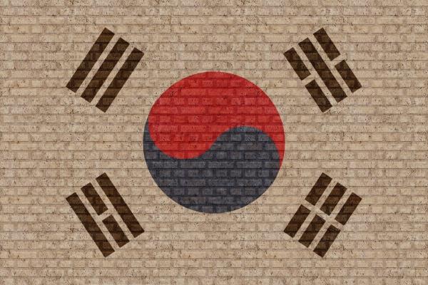 3d flag of south korea on