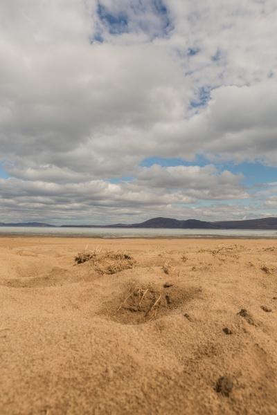 a sandy beach on the bank