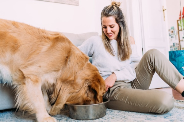 italy young woman feeding dog