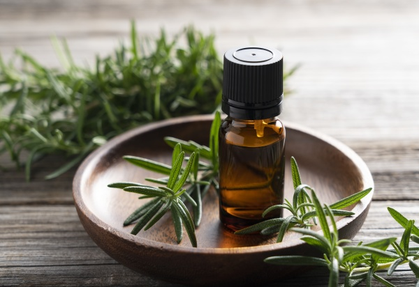 a bunch of fresh rosemary and