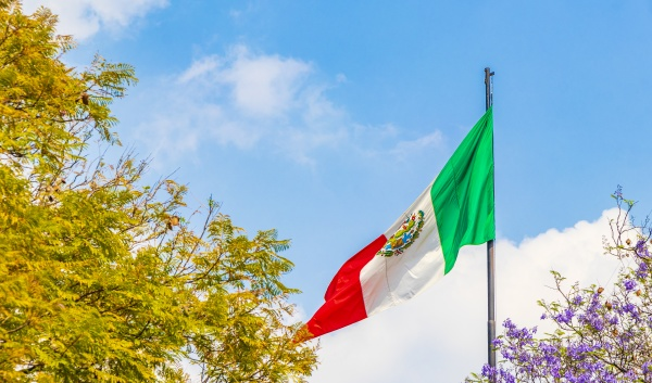 mexican flag green white red with