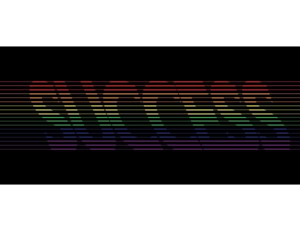 success vector logo