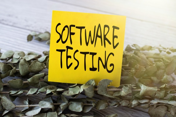 sign displaying software testing business approach