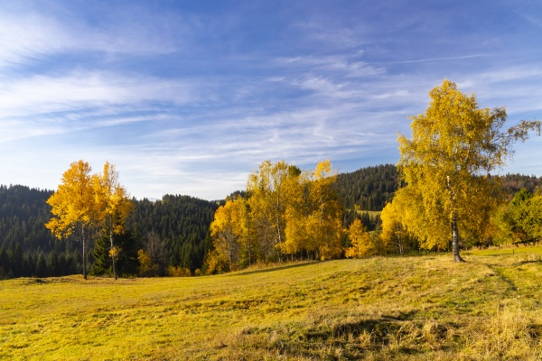 autumn landscape near saddle beskyd in