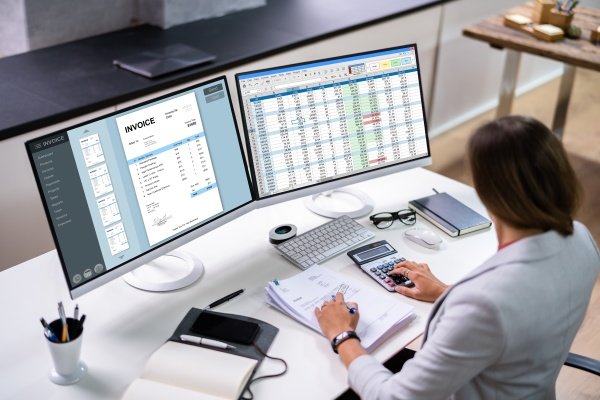 online electronic invoice and finance audit