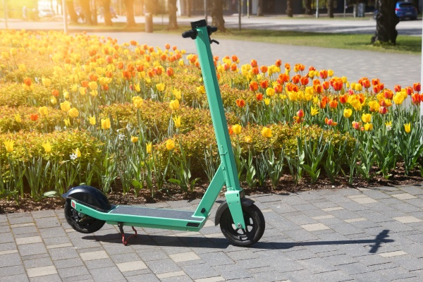 rental electric scooter