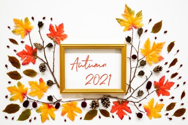 colorful autumn leaf decoration golden frame