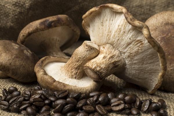 shiitake mushrooms and coffee beans