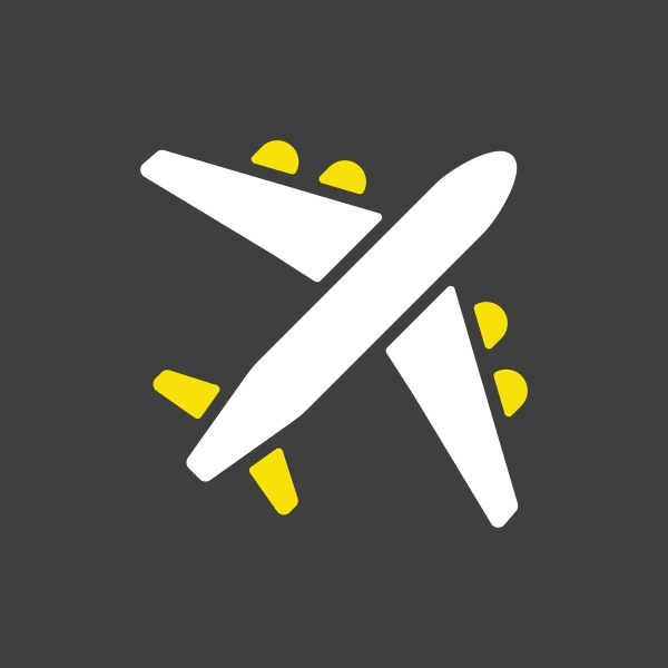 airplane or plane flat vector icon