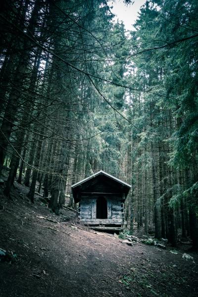 small wooden cabin in a dark