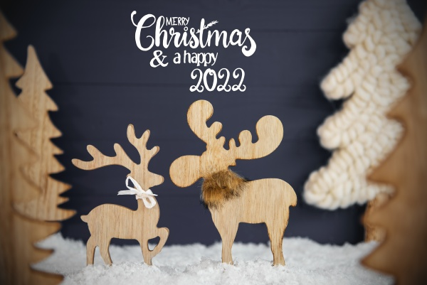 moose couple christmas tree snow merry