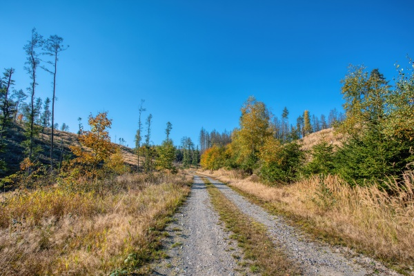 countryside landscape late summer with fall