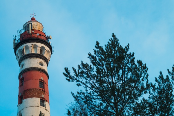 lighthouse in the forest among the
