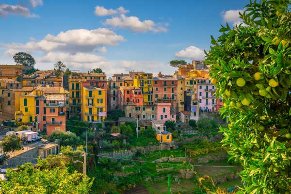 corniglia colorful cityscape on the