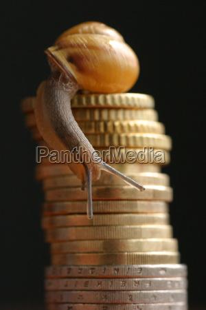 los animales moneda europa mercado monedas