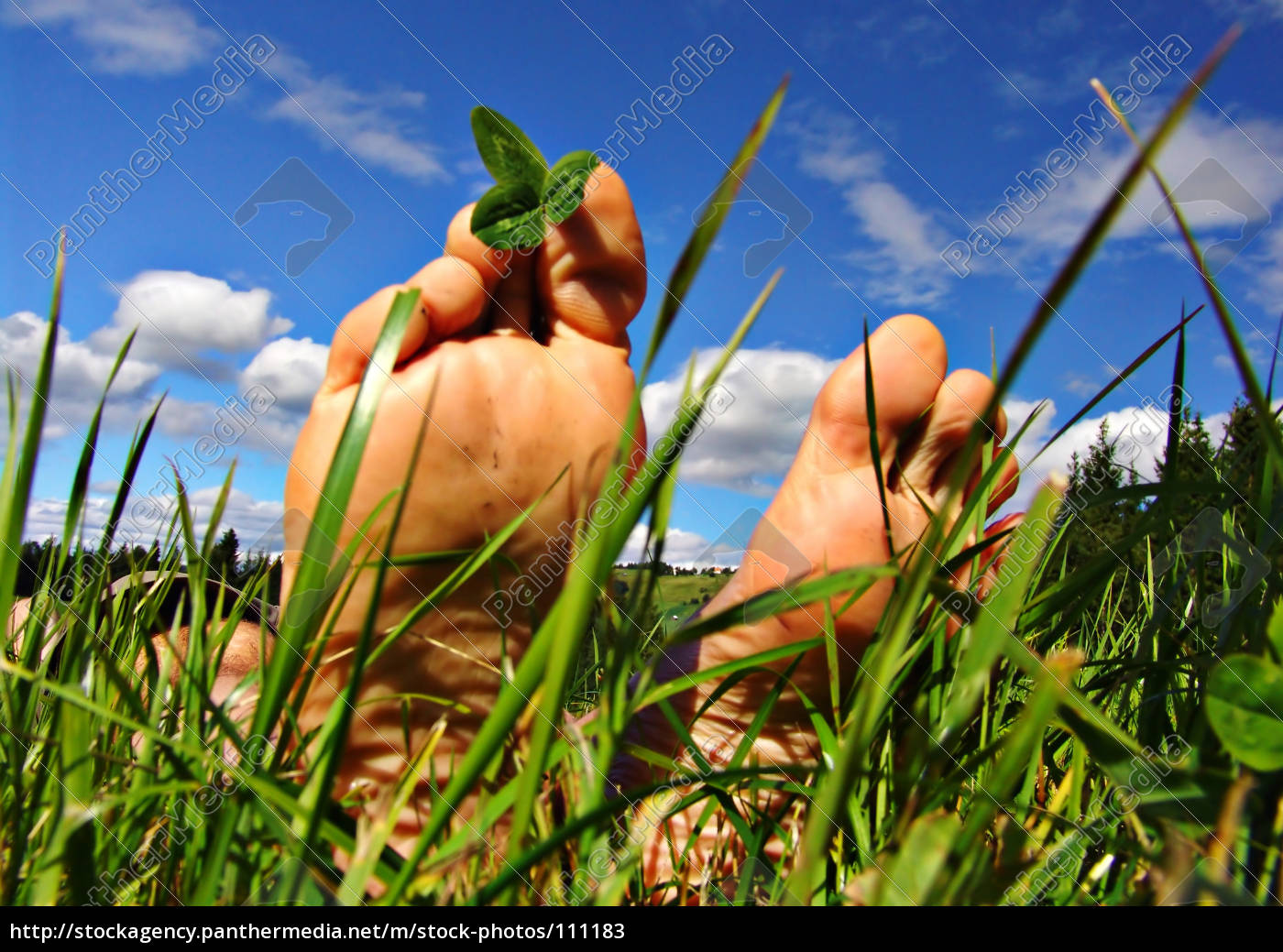 feet, during, the, summer, in, the - 111183