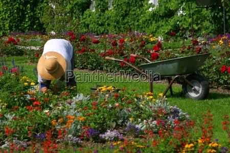gardener - 141121
