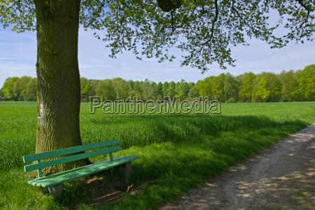 park, bench - 141344