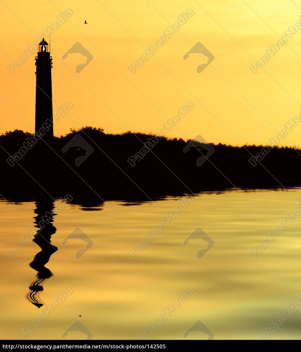 the, lighthouse - 142505