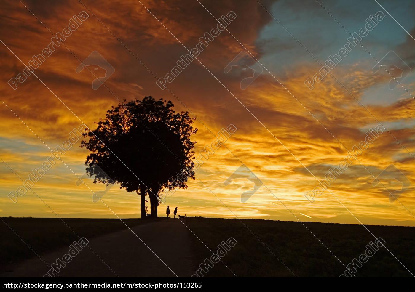 morgenstund, has, .......... - 153265