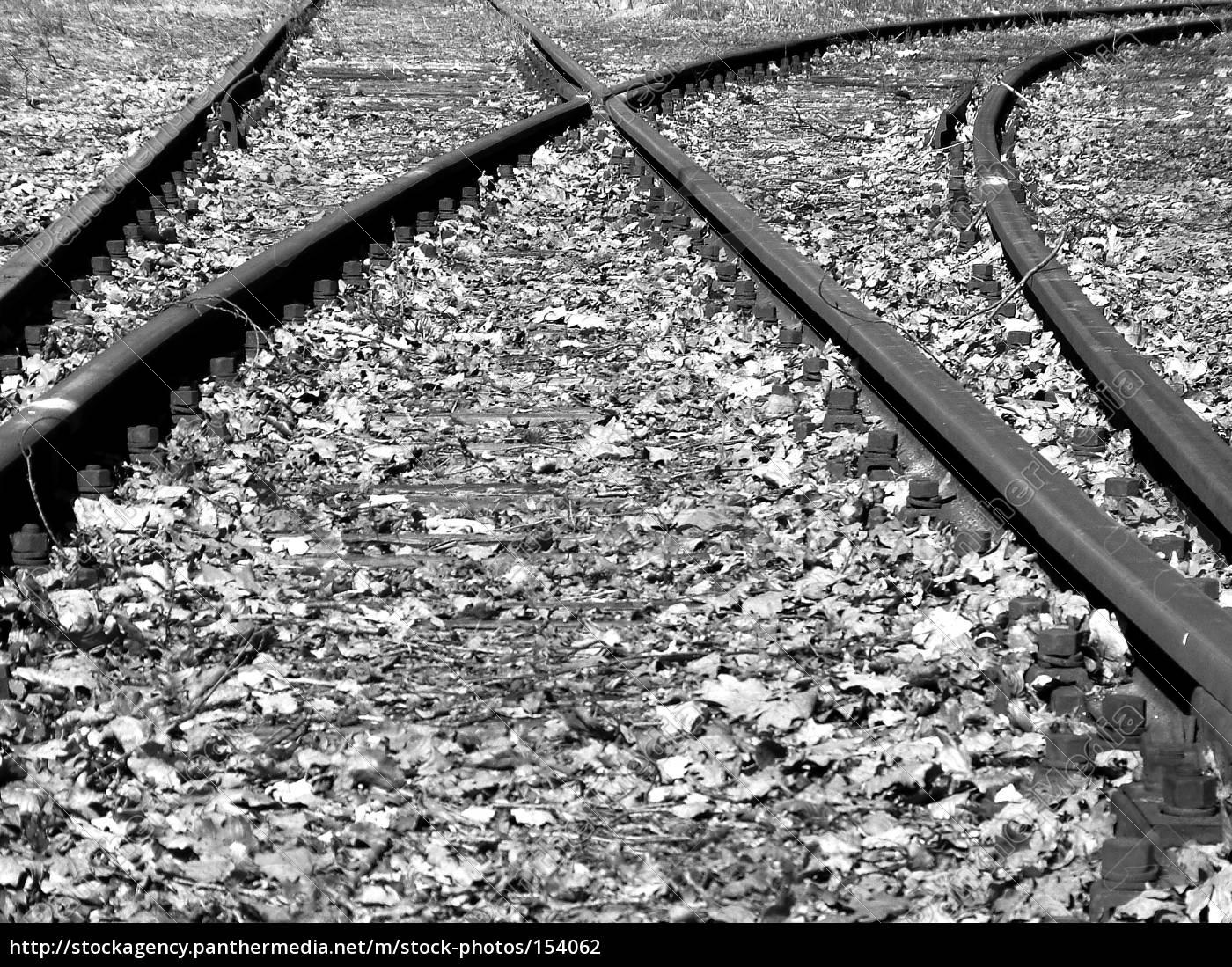 way, in, autumn - 154062
