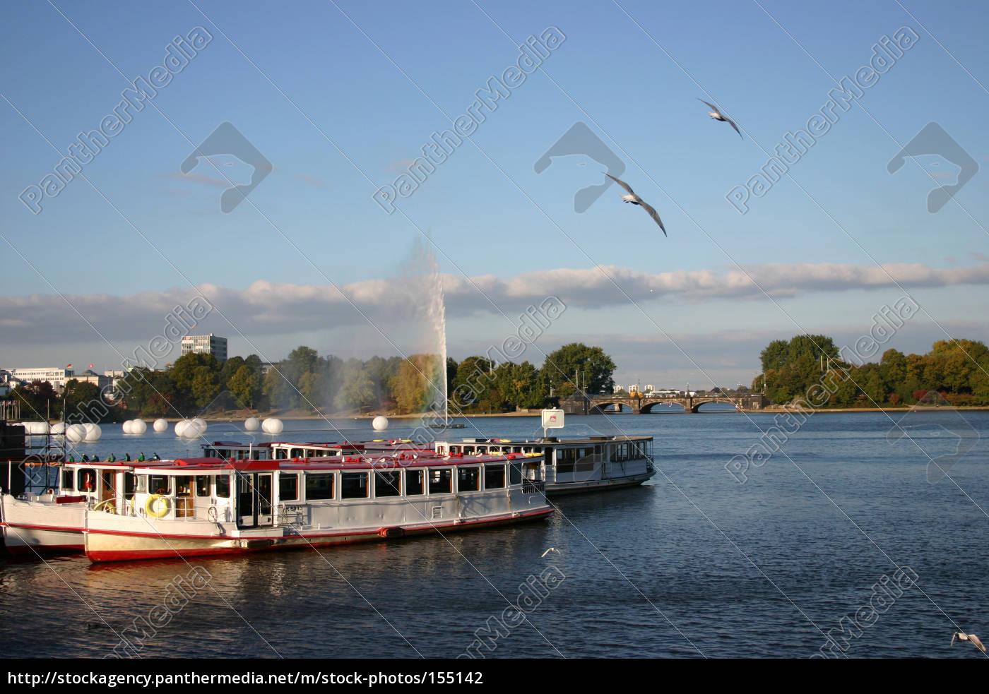 gulls, synchronous, flight - 155142