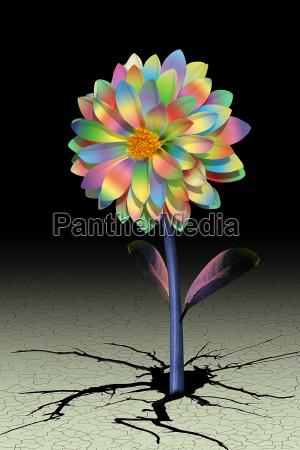 flower - 159719