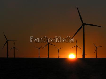 offshore windpark8