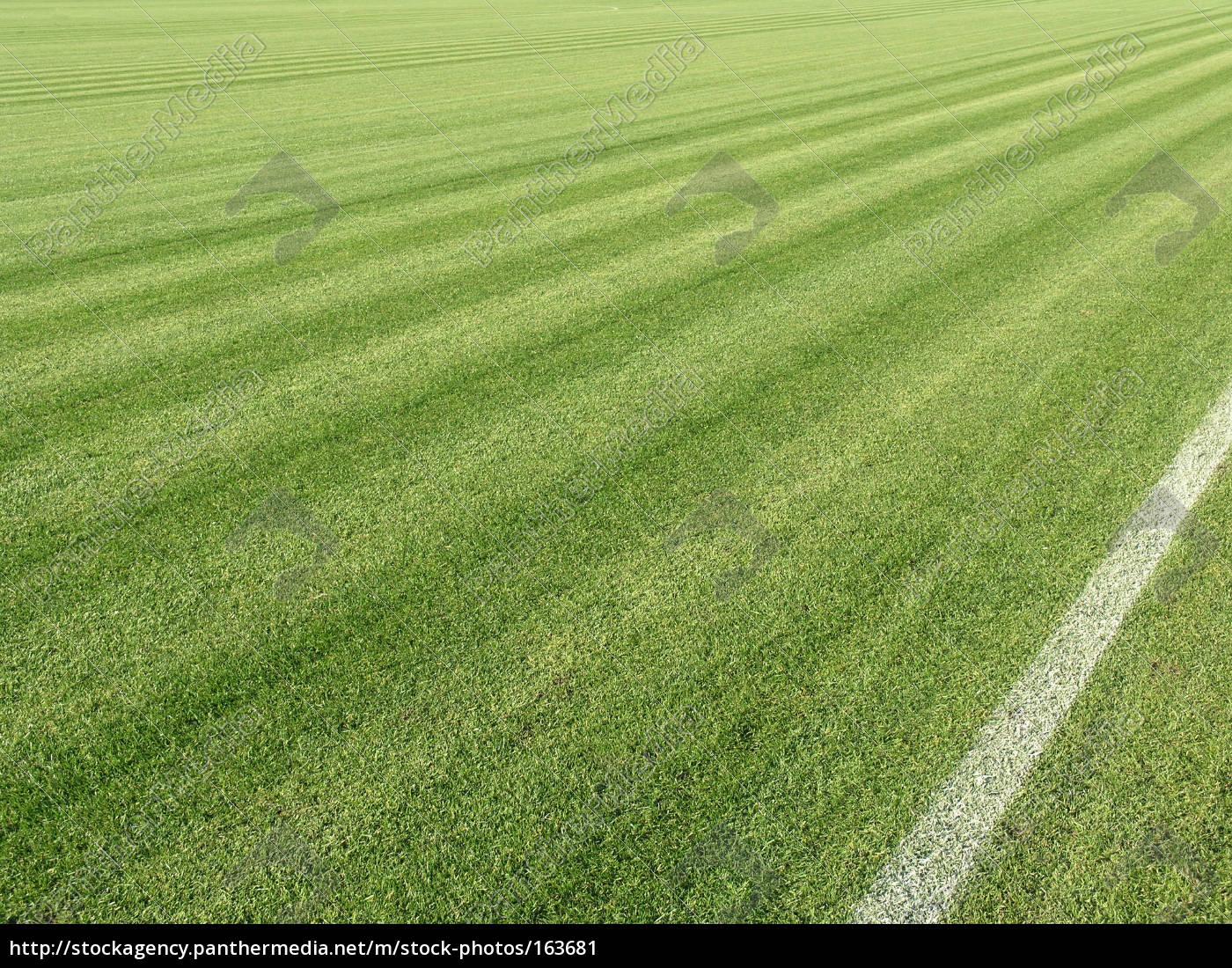 football, turf - 163681