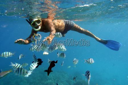 medio ambiente africa pescado hombre egipto