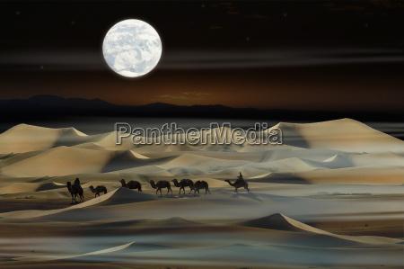 moon, night - 170578