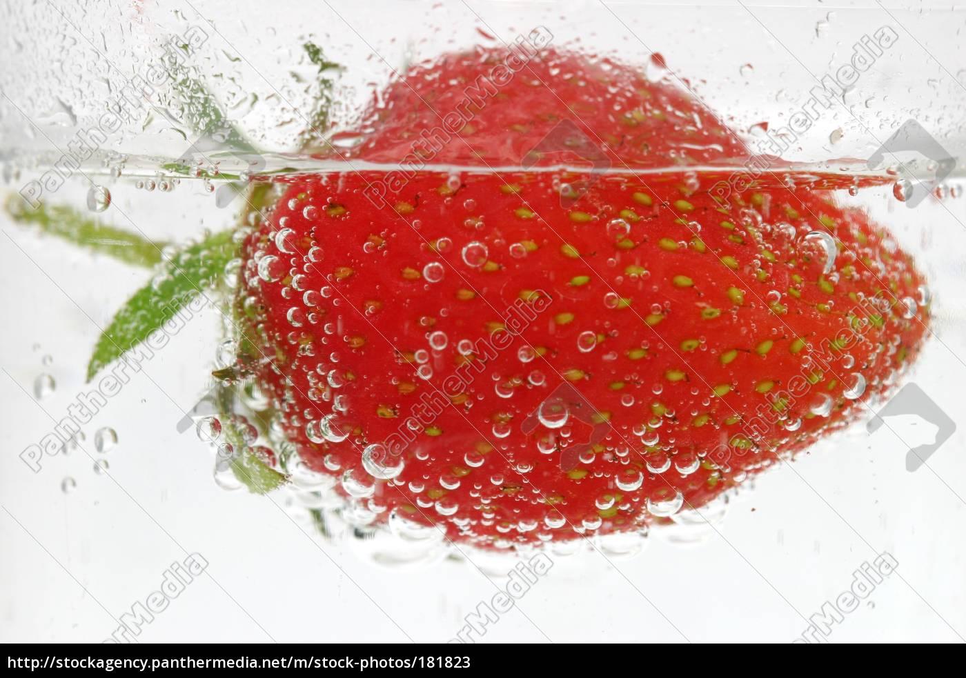 swimming, berry - 181823