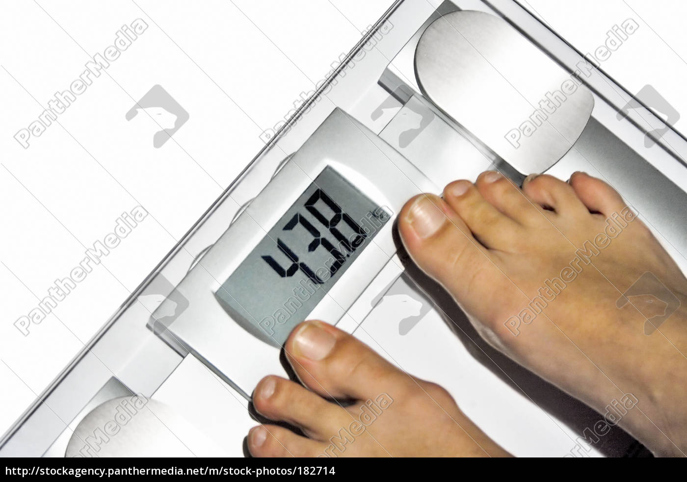 diet, ii - 182714