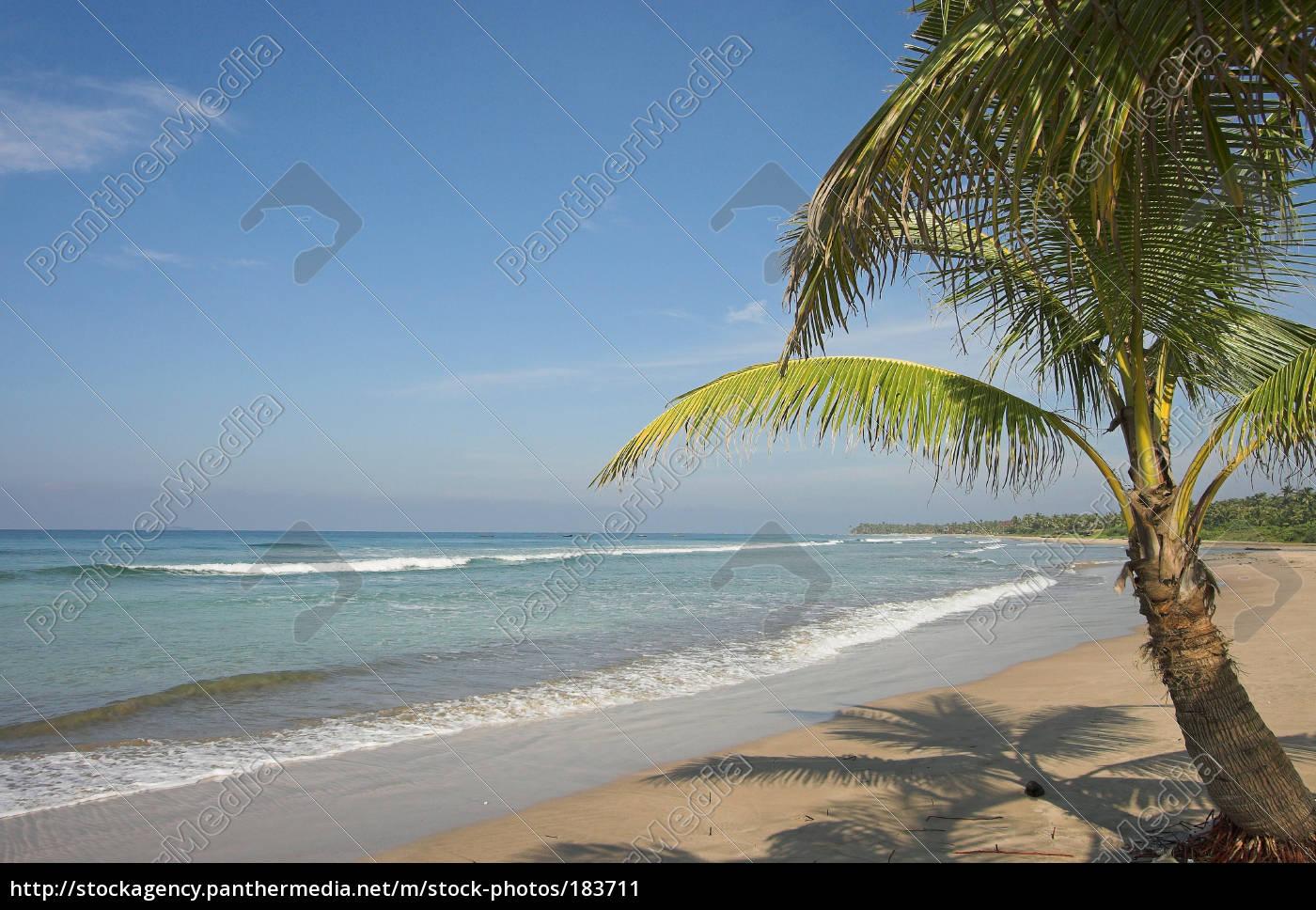 dream, beach - 183711