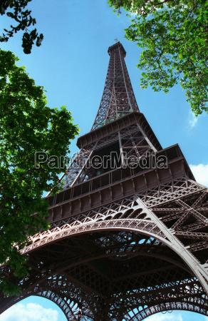 eiffel tower seen through treetops