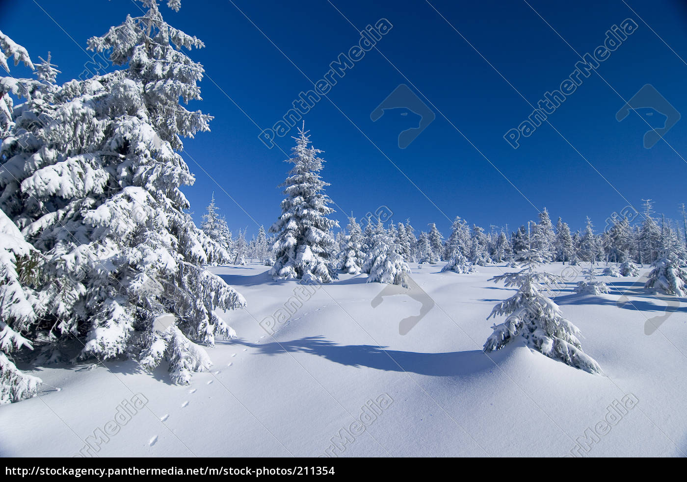 track, in, snow - 211354