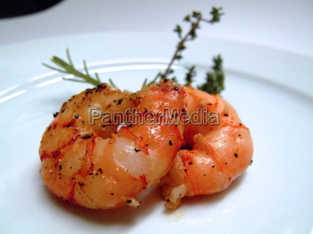 two, scampi - 216055