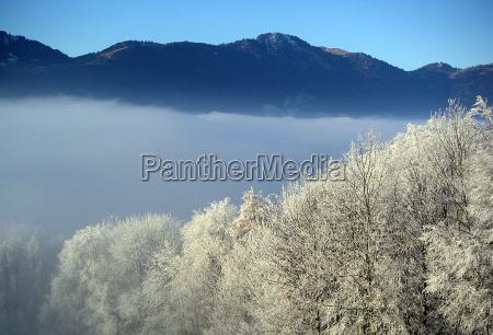 morning fog schwyz 2