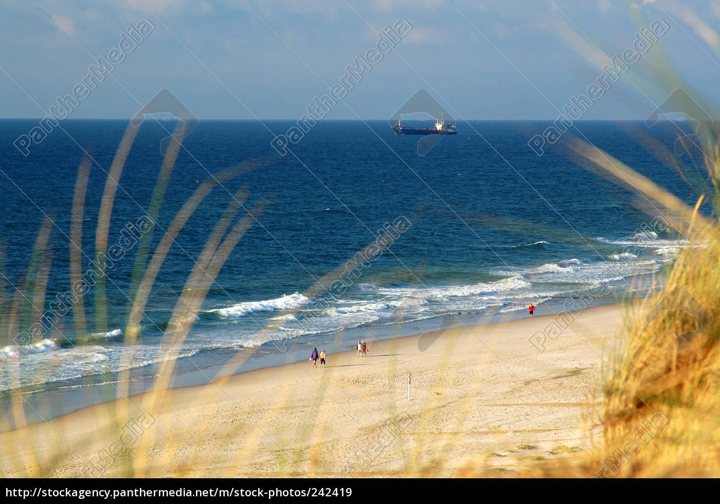 at, the, beach - 242419