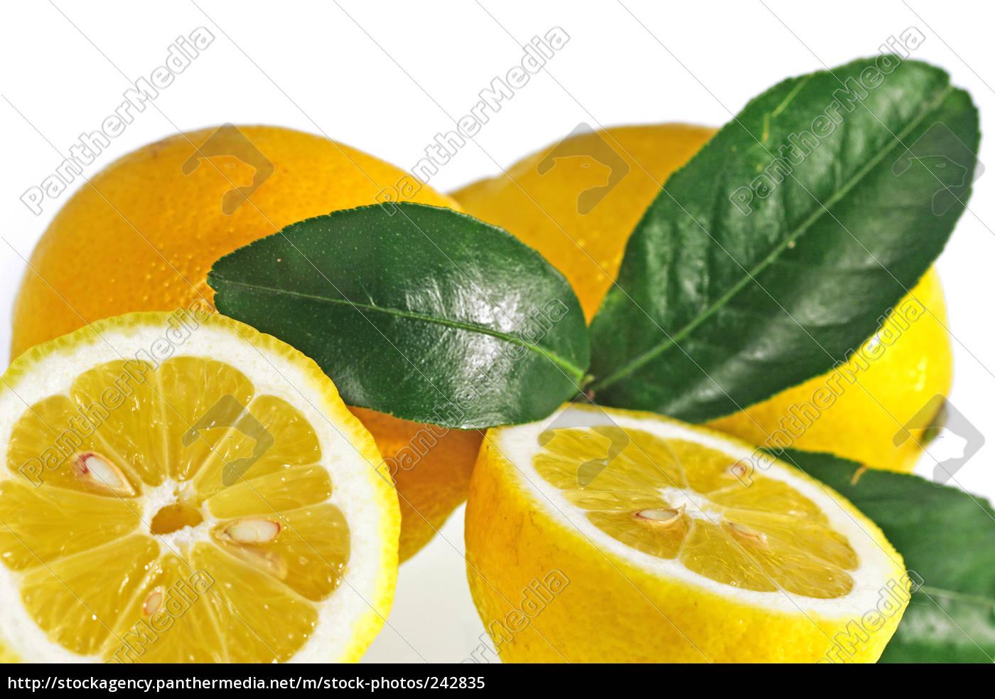 lemons - 242835