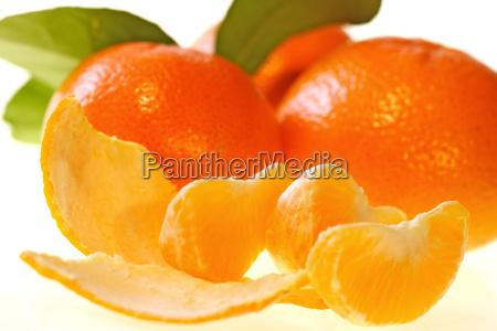 tangerines - 242702